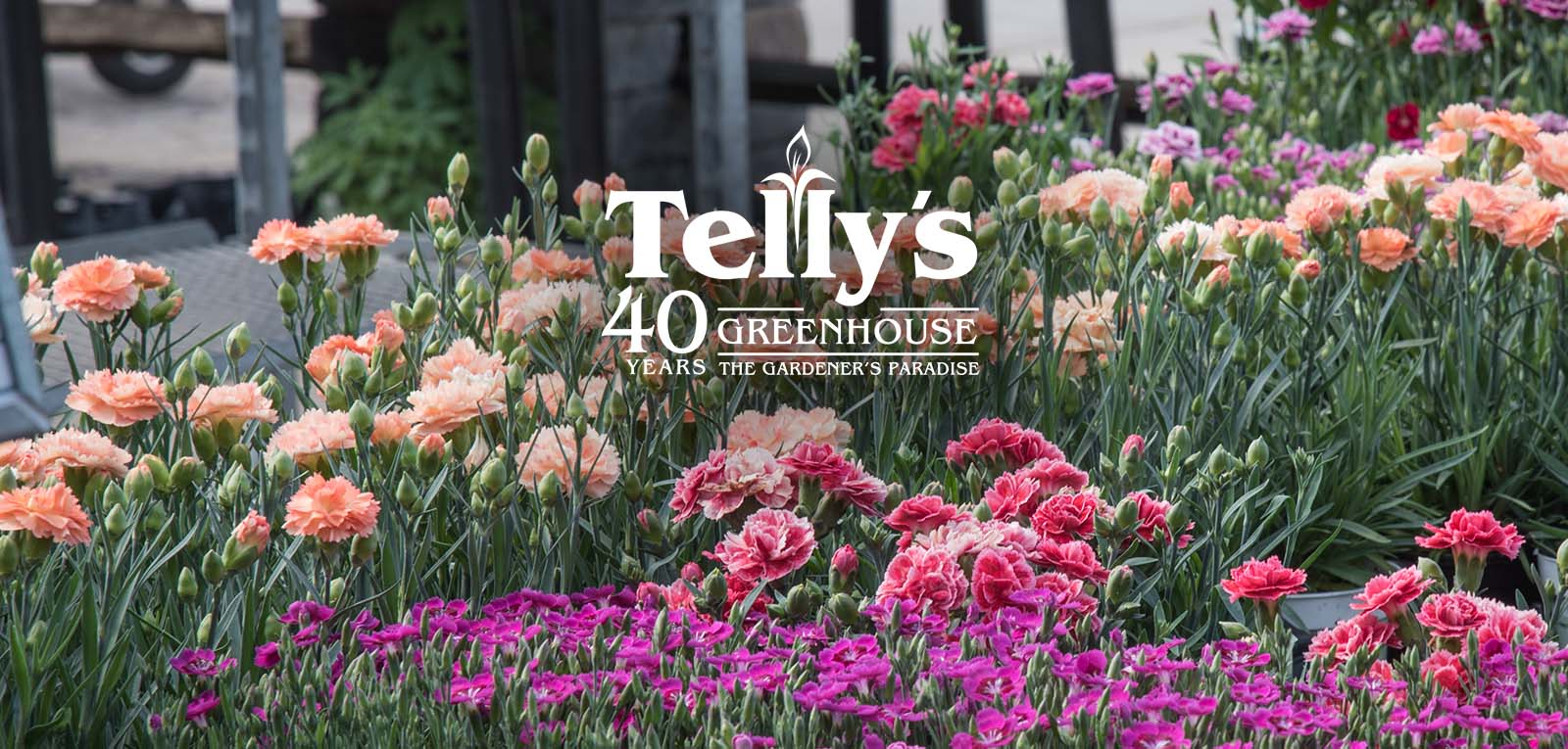 Customer reviews Telly s greenhouse and garden center